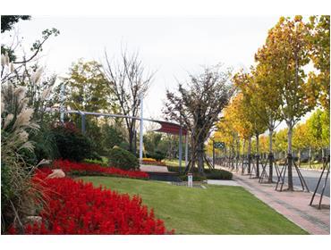南通通吕运河世纪公园段